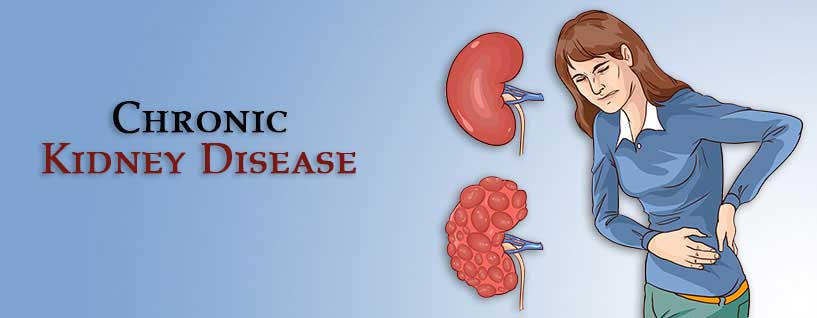 Chronic Kidney Disease Treatment In Ayurveda Ckd Stages